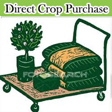 Direct Crop Purchace